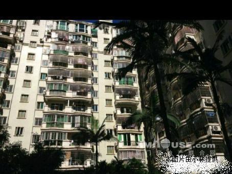 禾祥东紫荆园 顶楼楼中楼 稀缺楼中楼 闹中取静 靠火车站