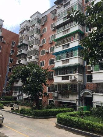 万寿二小旁 文园公寓二期 带电梯 朝南 离二小50米