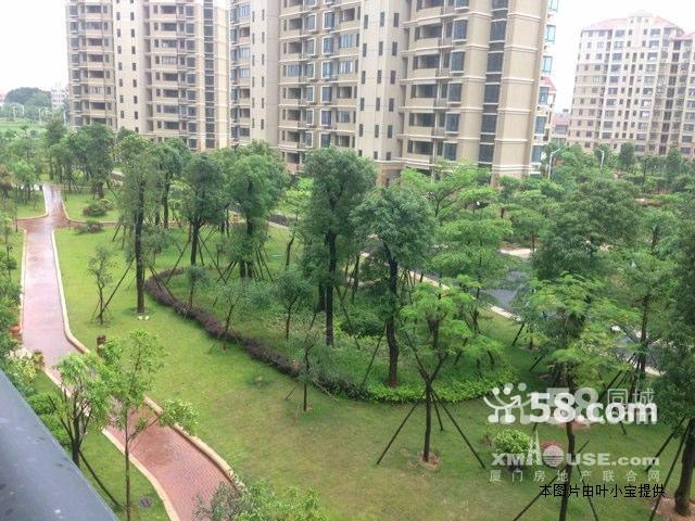 住宅围合成以绿化为主,局部为喷泉,水幕等生态水系的中心庭院景观,与