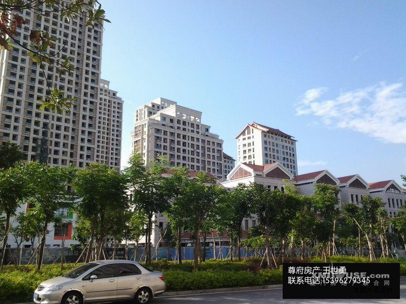 现代高尚住宅区建筑上采用了新嘉庚风格,新中式园林与之融合呼应,在图片