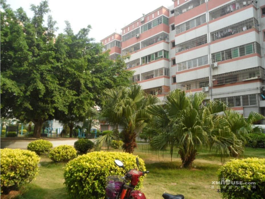 翔鹭花城大酒店对面两房两厅双阳台全新家具出租
