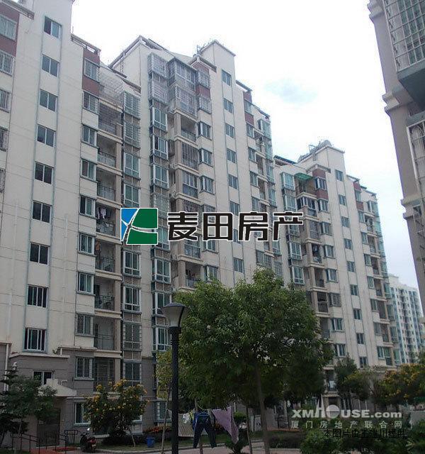 绿苑小区带大阳台的正规单身公寓,上海沧大桥首站