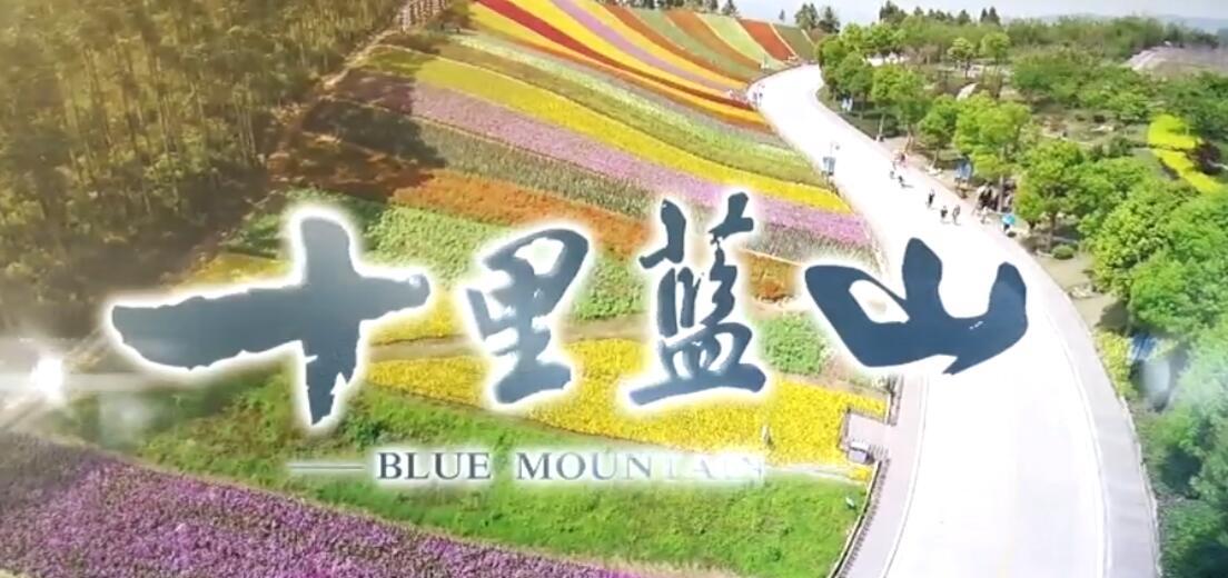 十里蓝山:情在动人深处